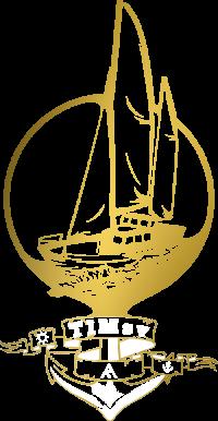 TIMsv_Logo-white